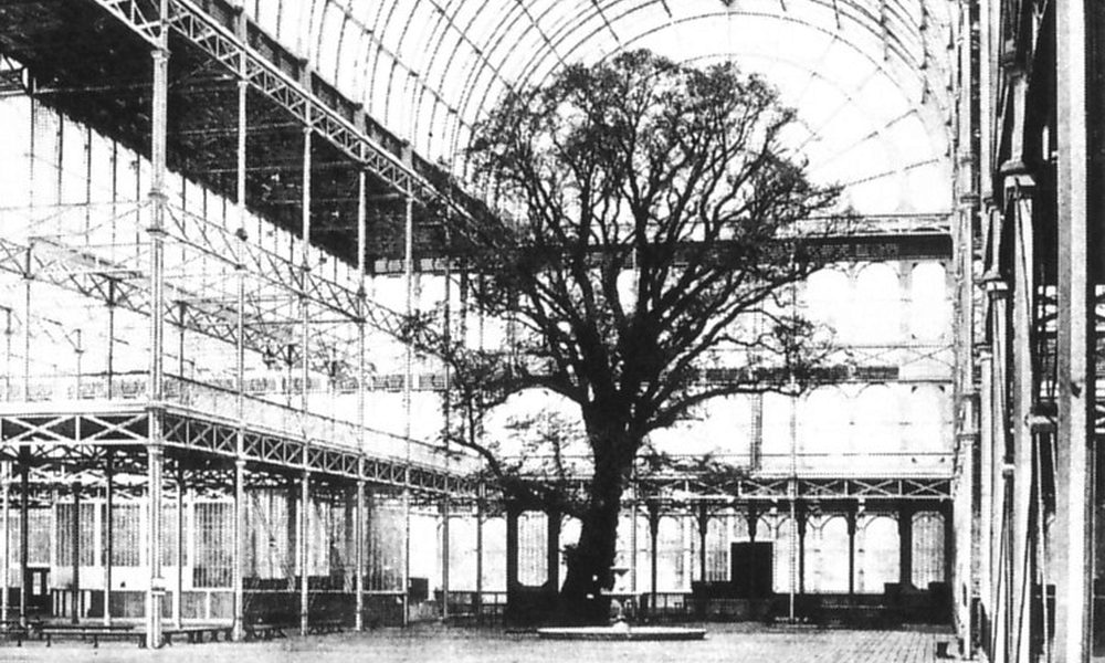 Crystal Palace Great Exhibition Tree 1851